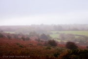 Dartmoor Landscape Autumn Colours