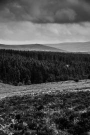 Dartmoor National Park Devon