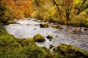 Dartmoor River