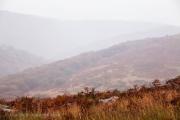 Dartmoor Tors in Mist