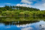 Fensworthy Reservoir