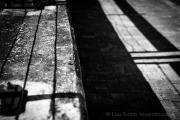 Urban Landscape Shadows