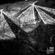 Mosaic Shadows